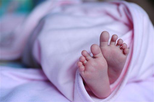 胎兒_pixabay