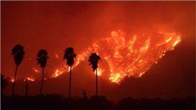 加州,森林大火,野火,洛杉磯,Ventura County 圖/翻攝自CAL FIRE推特