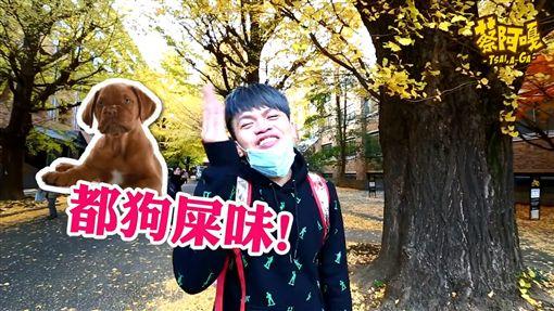 蔡阿嘎(圖/翻攝自臉書)