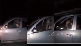 阿根廷,Jujuy,9號公路,車震(YouTube)