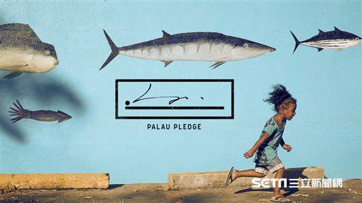 帛琉誓詞,入境,帛琉。(圖/帛琉政府提供)
