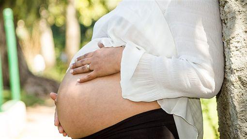 懷孕、孕婦/pixabay