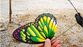 蝴蝶展,大陸,廣西,南寧,塑膠蝴蝶,詐騙,騙局 圖/翻攝自微博