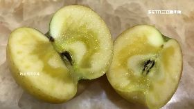 流汁蜜蘋果1200