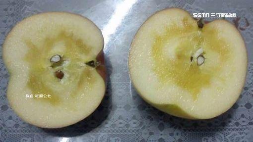 蜜蘋果/爆廢公社