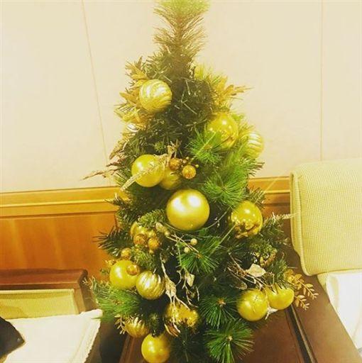 ▲鐘鉉生前送太妍的聖誕樹。(圖/翻攝自太妍IG)
