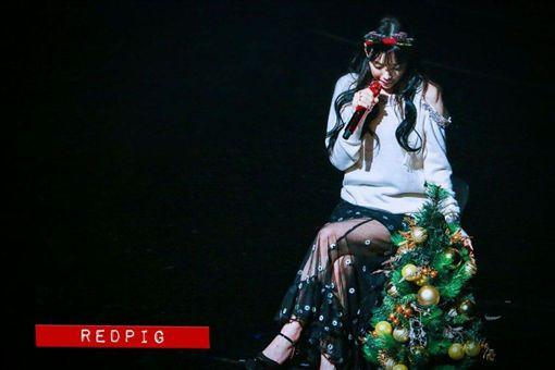 ▲太妍帶著鐘鉉送的聖誕樹開唱。(圖/翻攝自推特)