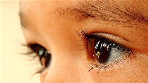 眼睛https://www.flickr.com/photos/78167207@N05/8004546559/in/photolist-dckoPr-4B8Hb9-2jgxcZ-33HpKk-6YVM9J-ewcteu-4HZ91r-4UyYZ-nnmCRM-54r8u7-hxdQ7M-49nX6x-ajU5TJ-4xAWRX-9jmUzB-3wRCrs-4PgAB5-6XgLa2-cXsoV