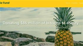 虛擬貨幣,比特幣,bitcoin,富翁,慈善機構,捐錢,善事(圖/翻攝自PineappleFund官網)https://pineapplefund.org/
