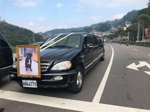 愛犬過世出殯  主人設靈堂出動禮儀車臉書「爆料公社」