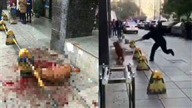 大陸湖南長沙市警察虐打黃金獵犬/微博