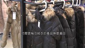 羽絨衣,品質,絨毛