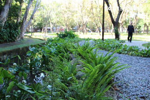 環境,東和公園,天和公園,綠寶石,公園,天母