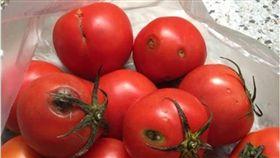 番茄,菜販,菜市場,爛番茄,爆怨公社,水果,退錢 圖/翻攝自爆怨公社