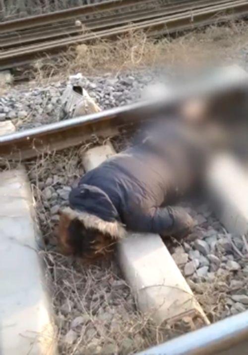 大陸一名女子兩度臥軌輕生,被輾斷雙腿後在鐵軌上不斷掙扎,醉猴仍不治。(圖/翻攝梨視頻)
