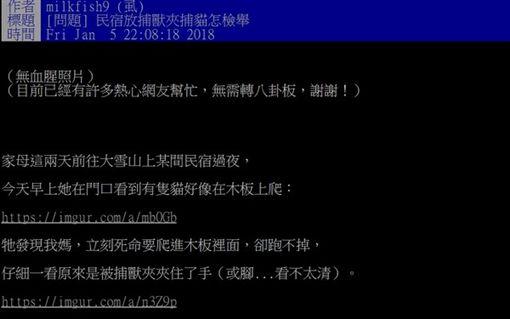 台中「大雪山民宿」放捕獸夾!野貓被夾傷遭狗咬死 目擊女泣慟批踢踢(PTT)
