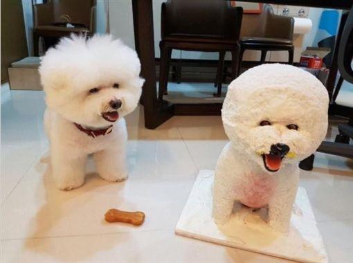蔡依林,愛犬,Whoohoo(圖/翻攝蔡依林臉書)