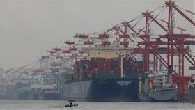 出口連14個月正成長(2)財政部8日公布11月出口288.8億美元,年增14%,連14個月正成長;進口則為229.2億美元,年增9%。出入相抵,11月出超59.6億美元,年增16.5億美元。圖為高雄港貨櫃碼頭。中央社記者董俊志攝 106年12月8日