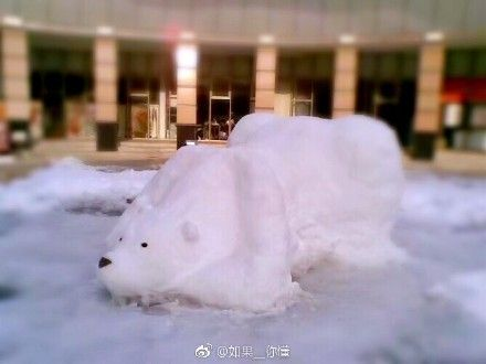 下雪 雪人https://www.weibo.com/5648162302/FDhvlzX9j?refer_flag=1001030103_&type=comment#_rnd1515403055774