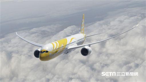 酷航787客機。(圖/酷航Scoot提供)
