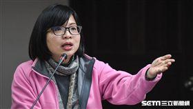 民進黨立委林淑芬於衛生及環境委員會質詢。 圖/記者林敬旻攝