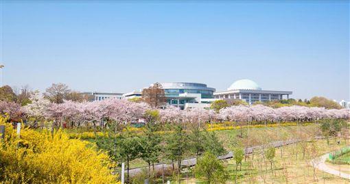 春季度假攻略 日、韓、中三大櫻花節 華欣、巴拉望海濱度假/業配