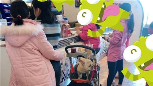 嘸衛生!賣場借嬰兒車裝狗 惹毛眾多網友譙翻