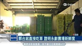 鴻海旗下台灣夏普家電攜手永齡農場推出會員訂閱制生鮮平台
