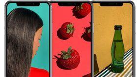蘋果,iPhone,iX,瀏海,螢幕,廉價,Apple(圖/翻攝自Apple官網)