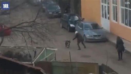 羅馬尼亞,惡犬攻擊路人(圖/翻攝自YouTube)
