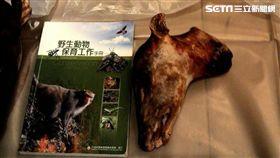婚宴,林務局,台灣野山羊,山羌,野生動物保育法,保育動物,彩蝶宴