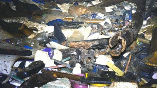 生態,浩劫,海龜,產卵,垃圾堆,澳大利亞,聖誕島,劉烘昌,BBC earth 圖/翻攝自BBC earth臉書 ID-1220593