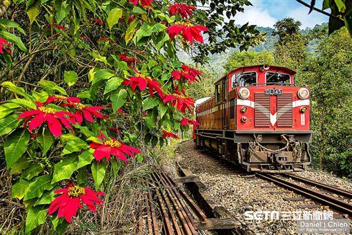 阿里山小火車,森林鐵路。(圖/台鐵提供)