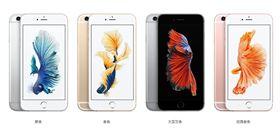 蘋果,Apple,iPhone,6S Plus(圖/翻攝自蘋果官網)