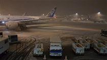 台旅客遭全日空丟包機場,東京,大雪,暴雪,成田機場 圖/翻攝自洪致文