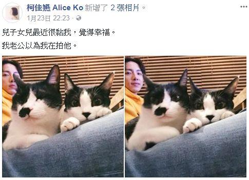 坤達、柯佳嬿/臉書