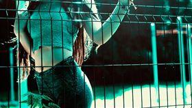 16:9 正妹 辣妹 火辣 身材 小蠻腰 圖/翻攝自pixabay https://pixabay.com/photo-1741466/