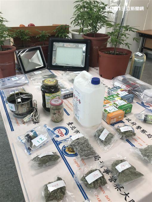 台南的丁男在網路買種子,利用自己園藝專長種植大麻,還自學提煉大麻膏,遭台北市毒緝中心循線逮獲,訊後依毒品罪送辦(楊忠翰攝)