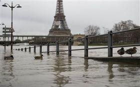 法國,巴黎,水患,塞納河,潰堤,鼠疫,洪水 圖/翻攝自歐新社