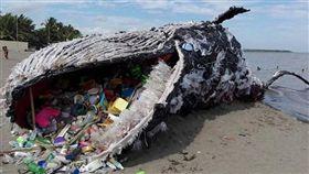 鯨魚,塑膠,裝置藝術,菲律賓,綠色和平組織,海洋,保育,垃圾,保護,Discoverocean 圖/翻攝自Discoverocean IG https://goo.gl/8Shp61