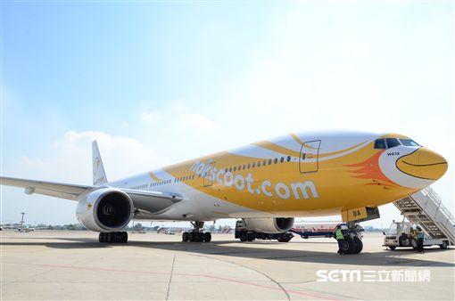 酷鳥航空,低本錢航空,NokScoot。(圖/酷鳥航空提供)