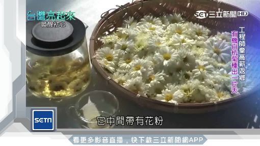 台灣亮起來/不測轉折 返鄉種有機菊