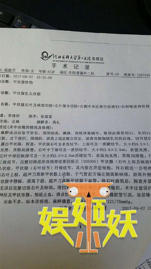 杜志國 杜淳/翻攝自全明星探