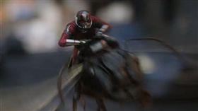 蟻人,續集,黃蜂女,預告片(翻攝自YouTube)