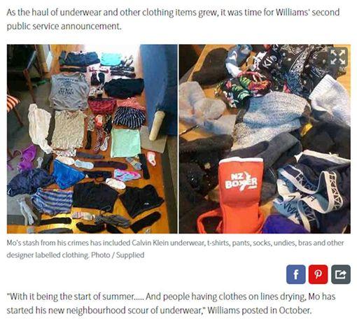 內衣褲,紐西蘭,貓,小偷,胸罩,內褲,Ed Williams 圖/翻攝自紐西蘭前鋒報