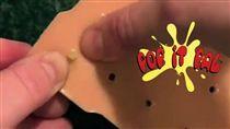 擠痘痘,玩具,美國,粉刺,膿瘡,Pop it pal,爆漿麻吉/翻攝Pop it Pal臉書