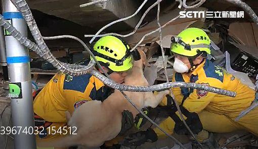 統帥,搜救犬,搜救人員,員工,受困,地震,花蓮