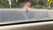 路上突發狀況多 駕駛險撞嬰兒引發熱議