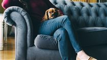 沙發,寵物,悠閒,坐著,翹腳(圖/Pixabay)
