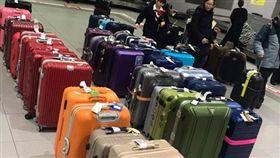 日本,機場,行李,行李箱,顏色,分類,方便,工作人員,出國,關西 https://www.facebook.com/groups/NipponBackpacking/